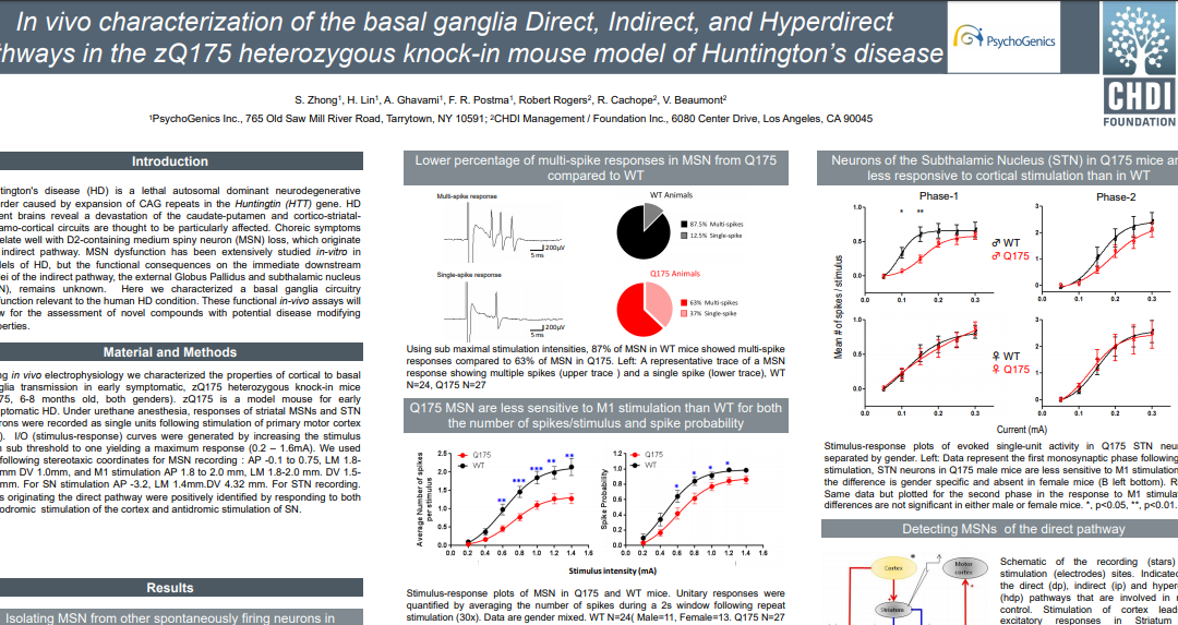 In vivo characterization of the basal ganglia Direct, Indirect, and Hyperdirect pathways in the zQ175 heterozygous knock-in mouse model of Huntington's disease