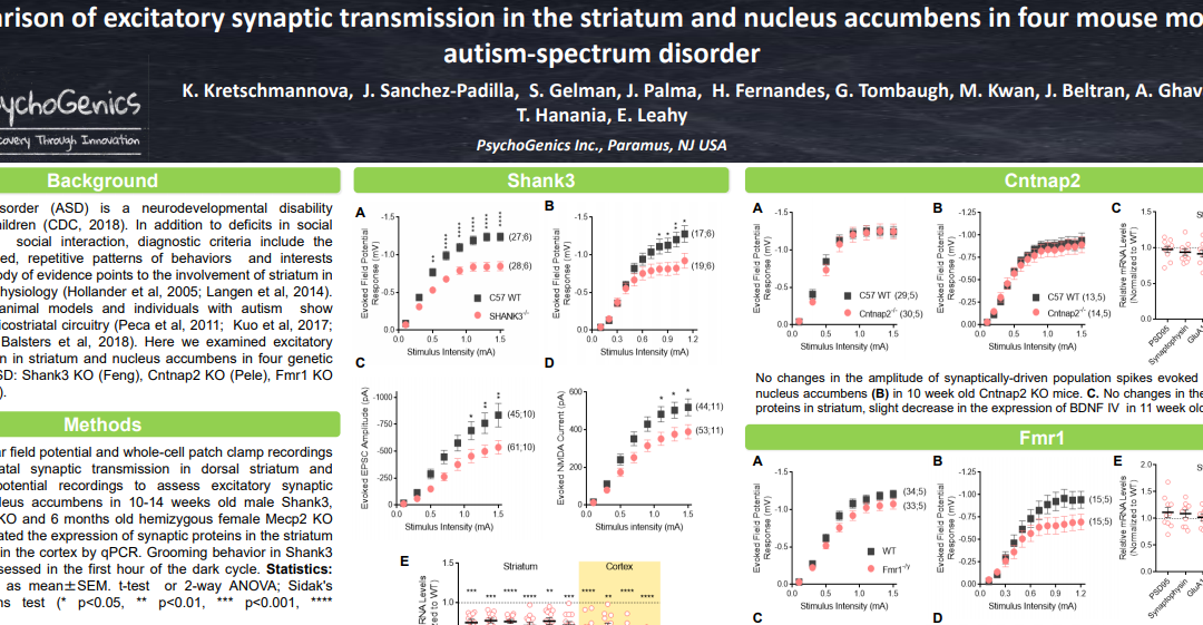 Comparison of excitatory synaptic transmission in the striatum and nucleus accumbens in four mouse models of autism-spectrum disorder
