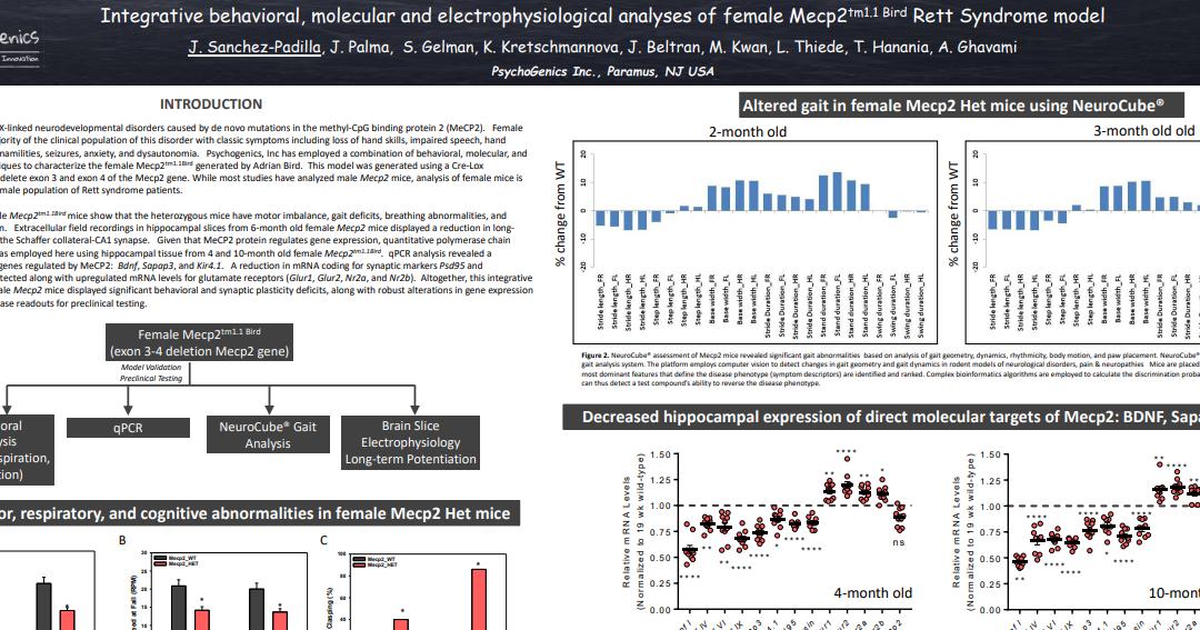 Integrative behavioral, molecular and electrophysiological analyses of female Mecp2tm1.1 Bird Rett Syndrome model